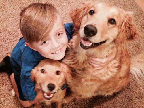 ethan-katz-with-his-dogs