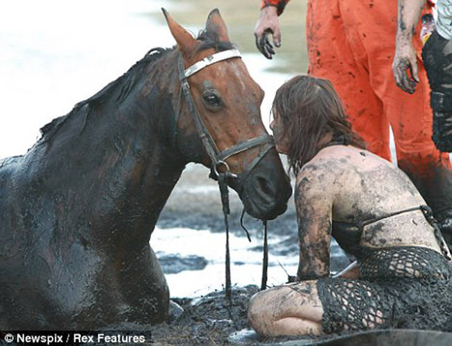 horse-stuck-in-mud-rescued-by-heroes-03