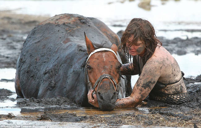 horse-stuck-in-mud-rescued-by-heroes-04