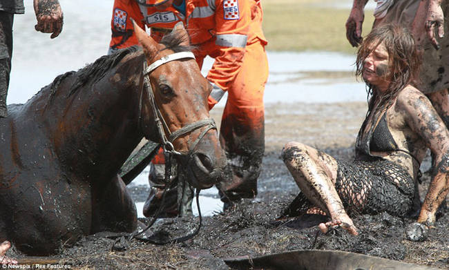 horse-stuck-in-mud-rescued-by-heroes-07
